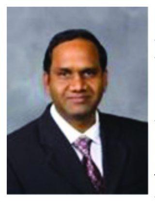 Veeramani Shanmugam